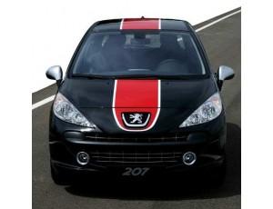 207 (desde 2006)